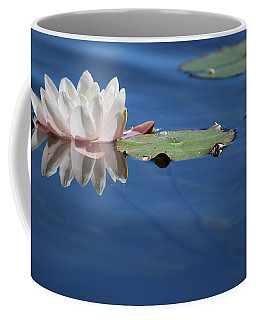 Coffee Mug featuring the photograph Reflecting In Blue Water by Amee Cave