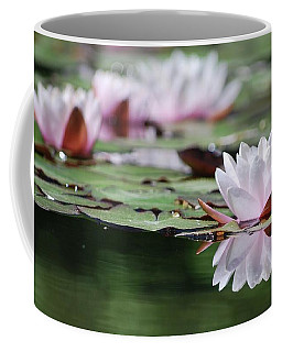 Coffee Mug featuring the photograph Reflection by Amee Cave