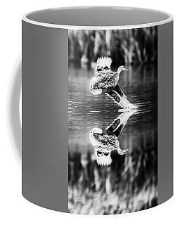 Reflection Flight  Coffee Mug
