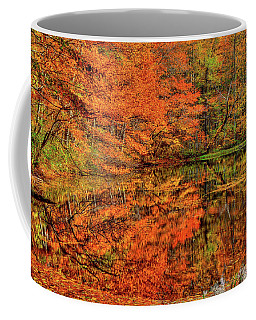Reflection Of Autumn Coffee Mug by Midori Chan