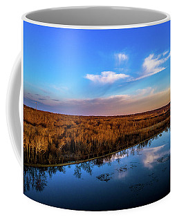 Reflection Pool Coffee Mug