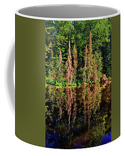 Coffee Mug featuring the photograph Reflections 010 by George Bostian