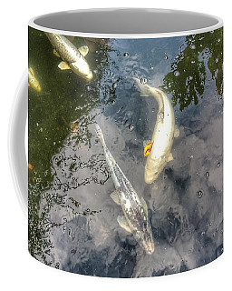 Reflections And Fish 9 Coffee Mug by Isabella F Abbie Shores FRSA