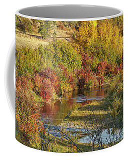 Coffee Mug featuring the photograph Reflections Of Autumn by Sue Smith