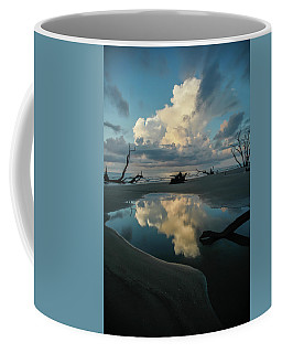 Coffee Mug featuring the photograph Reflections by Ronald Santini