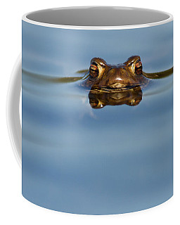 Reflections - Toad In A Lake Coffee Mug