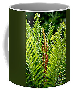 Refreshing Green Fern Wall Art Coffee Mug