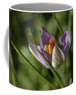 Refreshments  Coffee Mug by Connie Handscomb