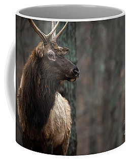 Regal Coffee Mug by Andrea Silies