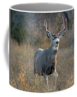Regal Buck Coffee Mug