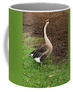 Regal Poise Coffee Mug