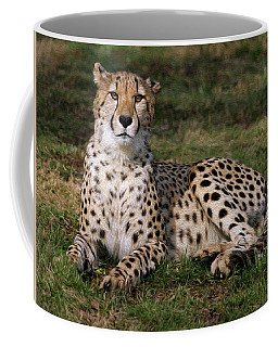 Regal Pose Coffee Mug