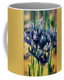 Coffee Mug featuring the photograph Regal Splendour  by Connie Handscomb