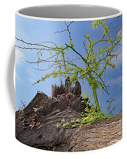 Regrowth Coffee Mug