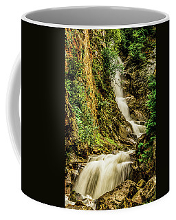 Reid Falls Coffee Mug
