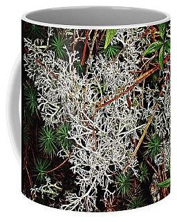 Coffee Mug featuring the photograph Reindeer Moss by Joy Nichols