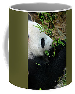 Relaxed Panda Bear Eats With Green Leaves In Mouth Coffee Mug