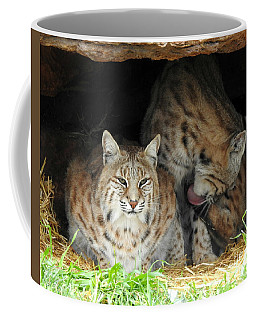 Relaxing Felines Coffee Mug