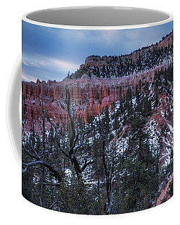 Coffee Mug featuring the photograph Remembering Bryce by Edgars Erglis