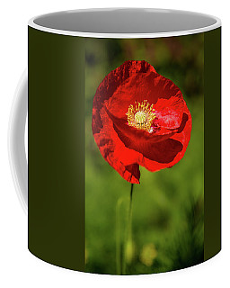 Coffee Mug featuring the photograph Remembering by Onyonet  Photo Studios