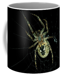 Coffee Mug featuring the photograph Repairing by Steven Santamour