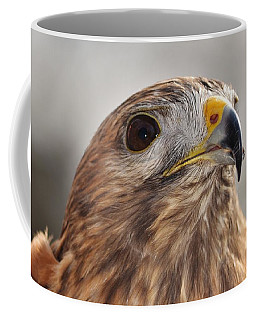 Rescued Hawk Coffee Mug