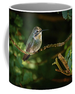 Coffee Mug featuring the photograph Resting Anna by Robert Bales