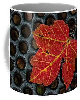 Resting From The Fall Coffee Mug