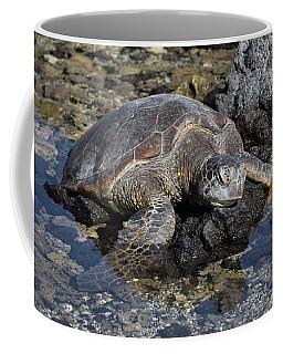 Coffee Mug featuring the photograph Resting My Head by Pamela Walton