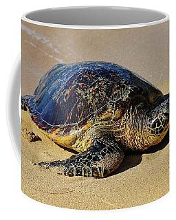 Resting Sea Turtle Coffee Mug by Craig Wood