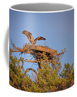 Returning To The Nest Coffee Mug by Rick Berk