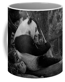 Revel In Bamboo Coffee Mug