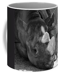 Rhino Nap Coffee Mug
