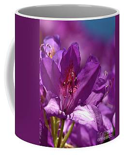 Rhododendron  Coffee Mug by Stephen Melia