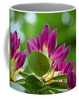 Rhododendron Buds Coffee Mug by MTBobbins Photography