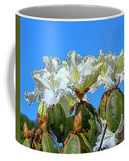 Rhododendron Ciliicalyx Dthn0213 Coffee Mug