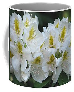Coffee Mug featuring the photograph Rhododendron Rhapsody - Springtime In The Garden by Brooks Garten Hauschild