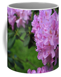 Coffee Mug featuring the photograph Rhododendron by Rick Morgan