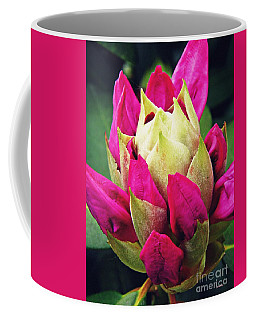 Rhododendron Velvet    Coffee Mug by Sarah Loft