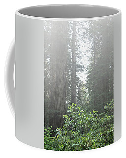 Rhododendrons In The Fog Coffee Mug