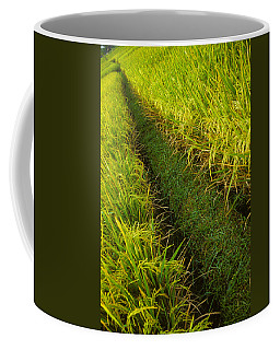 Rice Field Hiking Coffee Mug