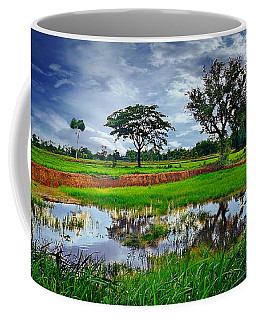 Rice Paddy View Coffee Mug