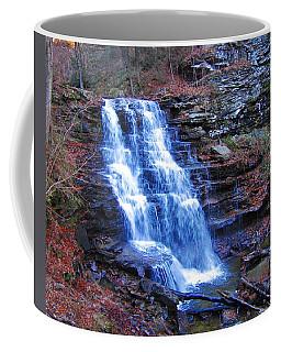 Ricketts Glen Waterfall 3941  Coffee Mug by David Dehner