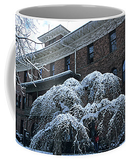 Ridenbaugh Hall And Elm Coffee Mug