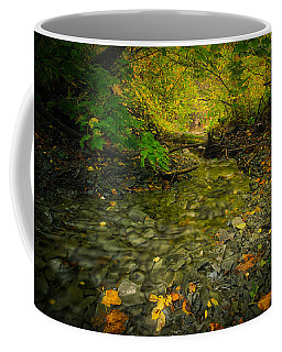 Riding Stream Coffee Mug