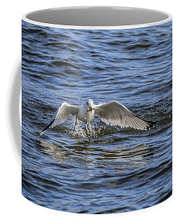 Coffee Mug featuring the photograph Ring My Bill by Ray Congrove