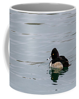 Ring Necked Duck Coffee Mug