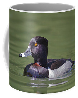 Ring-necked Duck Profile Coffee Mug