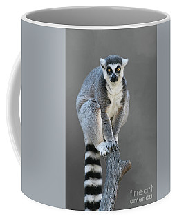 Ring-tailed Lemur #6 V2 Coffee Mug