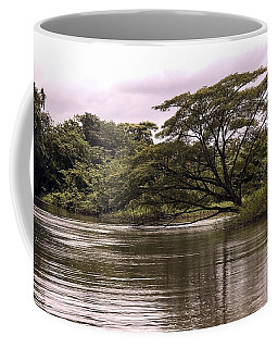 Riparian Rainforest Canopy Coffee Mug